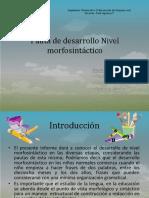 pautadedesarrollonivelmorfosintcticooo-130926125128-phpapp01