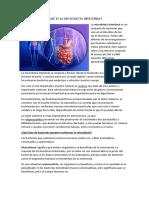 Qué Es La Microbiota Intestinal
