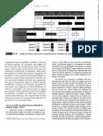 345457618-Administracao-Da-Producao-Slack-3ªed-Parte-2.pdf