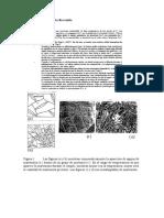 106_LEM_Martensita.pdf