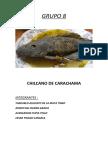 Chilcano de Carachama
