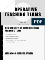 cooperative teaching teams sped 381