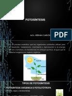 6 Fotosintesis