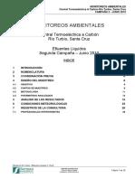 Monitoreo Rio Turbio - Efluentes Liquidos 2 - Rev0