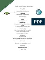 INFORME - MERMELADA