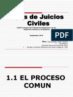 Presentacion Sobre Juicios Civiles Por Lic. Aldo Cader