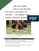 Los acusan de matar ilegalmente a una familia de osos y encubrir su crimen.pdf