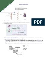 RESUMO Aula 1. Estrutura Dos Ácidos Nucleicos, DNA, RNAs