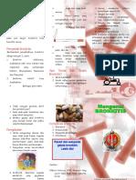27864537-Leaflet-Bronkitis.pdf