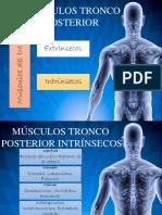 Presentacion Intrinsecos O.K
