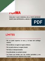 Copia de Presentación.pptx