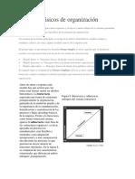 Modelos Básicos de Organización