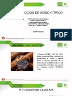 ÁCIDO CÍTRICO Primera Entrega