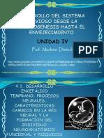Desarrollo Cefalico Temprano Embrionario