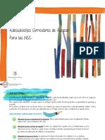 Adecuaciones-Curriculares-de-Acceso-2017.pdf