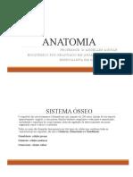 ANATOMIA - Turma Radiologia.pptx.pdf
