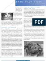 Download PDF Animals in Education Fact Sheet (#1 Teacher)