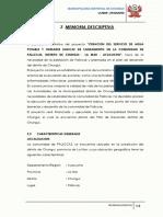 memoria pallccas.docx