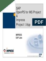 182856456-SAP-.pdf
