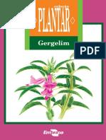 PLANTAR-Gergelim-ed-01-2007.pdf