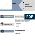Curriculum Vitae Format Ignacio