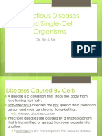 Bacteria and Viruses PowerPoint