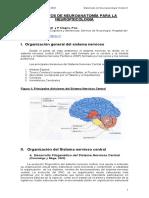 Elementos de Neuroanatomía Para La Neuropsicología