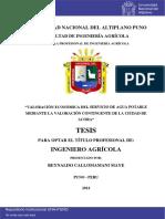 VALORACIÓN ECONÓMICA DEL SERVICIO DE AGUA POTABLE MEDIANTE LA VALORACIÓN CONTINGENTE DE LA CIUDAD DE ACORA