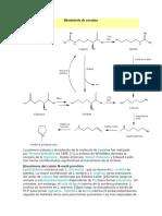 Biosíntesis de Cocaína