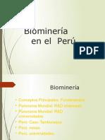 Biomineria en El Peru