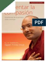 Nurturing Compassion SPANISH