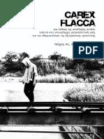 Carex Flacca #01