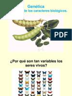 genética_mendeliana