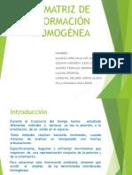 Matriz de transformación homogénea.pptx
