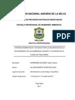 Criterios Ambientales y Sociales Para La Delimitacion Dela Faja Marginal de Las Quebradas Cushuro y Cocheros de La Ciudad de Tingo Maria