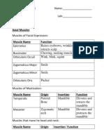 Copy of 148515_2765103_Muscle+Origin+insertion+Worksheet.docx