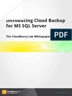 CloudBerry Backup for MS SQL