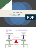 Patologia Qx
