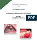 Plan de Trabajo de Medicina Estomatológica i