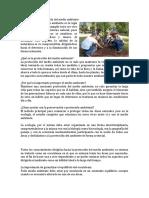 Protección y Conservación Del Medio Ambiente