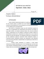 roteiro-de-aula-prc3a1tica1.pdf
