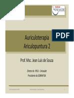 auriculoterapia.pdf