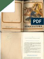 Agricultura_VII_1984.pdf