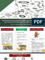 Diapositivas-PHB-Proceso-Batch-Grupo-J2.pptx