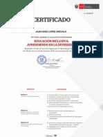 CERTIFICADO EDUCACION INCLUSIVA