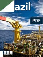 Sustainable-development-Brazil-Flyer.pdf