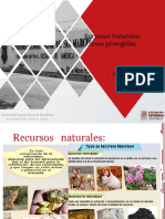 15 Recursos Naturales