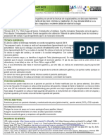 Bypass gastrico.pdf
