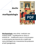 curs introductiv.pptx