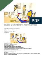 Cauzele aparitiei bolilor in medicina chineza.docx